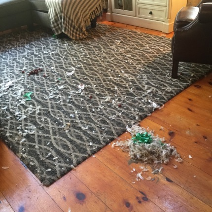 A feather pillow exploded